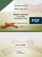 Alcanos 2013 Industrial