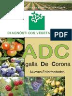 Agalla Corona