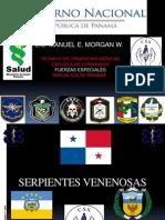 Las Serpientes Venenosas de Panama Comandos