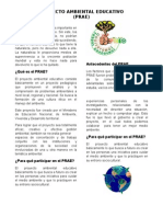 Proyecto Ambiental Educativo