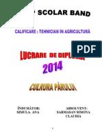LUCRARE DE DIPLOMA - TEHNOLOGIA DE CULTURA A PARULUI