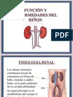 FUNCION Y ENFERMEDADES DEL RIÑON - copia