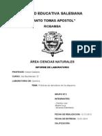Informe de Quimica (Esquema)