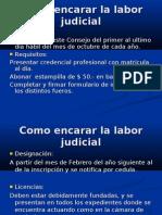 Charla sobre Pericias 2009