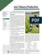 Organic Tobacco Gardening