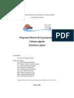 Programa Maestro Calamar Sonora