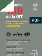 3- Convenio OIT 169 sobre pueblos indígenas y tribales en paises independientes