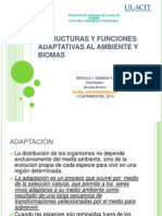 Semana 4_estructuras y Funciones Adaptativas Al Ambiente - Copia