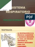 Fisiología veterinaria ii.pptx