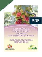 Manual Tecnico Cultivo de La Mora en El Huila