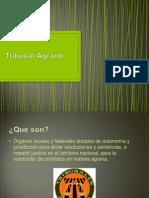 Tribunal Agrario Expo