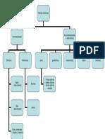 clasificacion de las centrales o plantas eléctricas.ppt