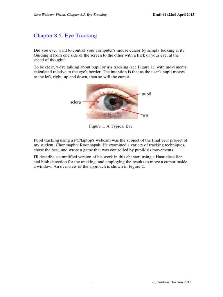 Eye Tracking through java | Eye | Software Engineering