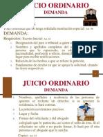 Presentacion Proceso Civil