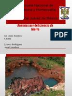 Anemias ferroprivas