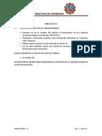 Guía de prácticas topografìa minera 2013 II