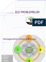 Seminar Arborele Problemelor