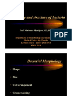 Lecture in Microbiology, Bacteria and different stuff