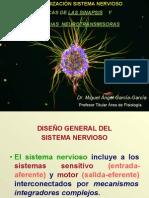 ORGANIZACIÓN DEL SISTEMA NERVIOSO, NEURONA-SINAPSIS.pdf