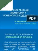 POTENCIALES DE MEMBRANA Y POTENCIALES DE ACCION.pdf