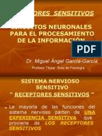 RECEPTORES SENSITIVOS.pdf
