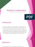 Proyecto Colaborativo
