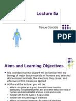Lecture 05a Tissue Coccidia