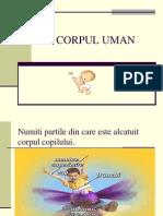 Corp Uman