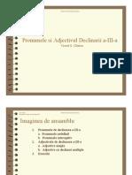 Pronumele Si Adjectivul Declinarii a-III-A
