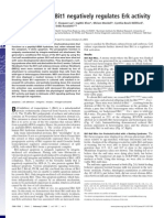 bit1 regulates erk (pnas)