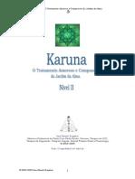Manual Karuna II