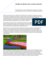 Jardineria y enfermedades de plantas mas comunes durante  primavera