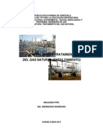 Guia Actualizada Tratamiento Gas Natural