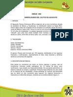 Generalidades Del Cultivo de Aguacate_1