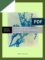 MGII_Practica_10_Determinación-de-las-características-fisiólogicas-de-los-hongos