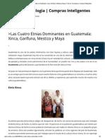 _Las Cuatro Etnias Dominantes en Guatemala_ Xinca, Garífuna, Mestiza y Maya _ Todo en Tecnologia _ Compras Inteligentes