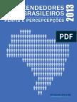 Empreendedores Brasileiros Perfis Percepcoes Relatorio Completo