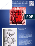 BCT II bioquímicamenstruacion