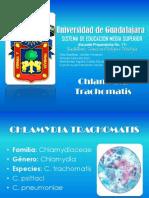 Presentacion Chlamydia Trachomatis