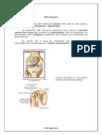 Articulações & Lesões