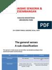 Kuliah Mekanisme Sensorik & Keseimbangan- Dr Sonny