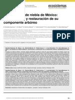 Gonzalez-Espinosa Et Al 2012 Los Bosques de Niebla de Mexico Conservacion y Restauracion de Su Componente Arboreo