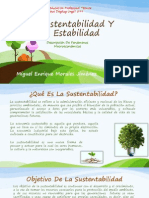 Sustentabilidad Y La Estabilidad