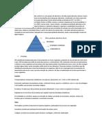 Resumo Pirâmide e Nutrientes