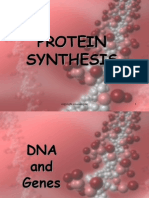 protein synthesis2 ppt