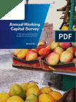 Annual Working Capital Survey - UK 2011