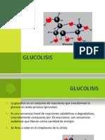 6 GLUCOLISIS