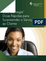 Customer Service Br1