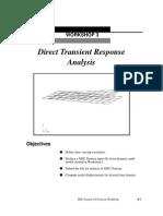 Direct Transient Response