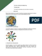 Principios Generales Del Derecho Ambiental Investigac...